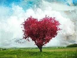 Pensare all'amore, pensare alla vita