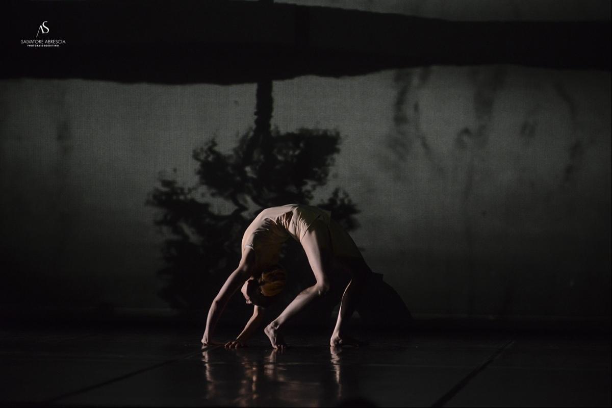 Questa sera sul palco all'aperto ad Acqui Terme. Pinocchio, spettacolo di teatro danza