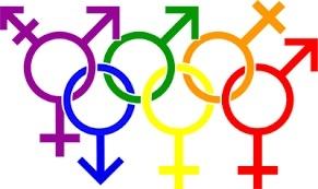 «Omotransnegatività...» uno studio in estrema profondità del problema L.G.B.T.Q