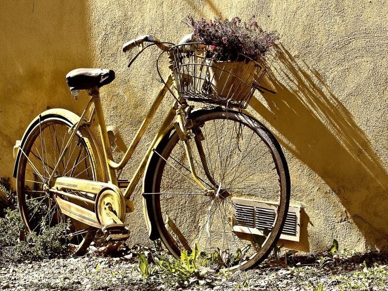 La bicicletta è il nuovo oggetto del desiderio degli italiani...